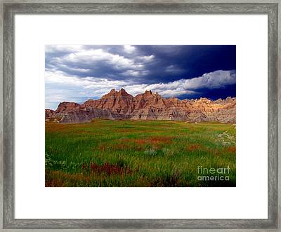 Sea Of Color Framed Print by Laurie Wilcox