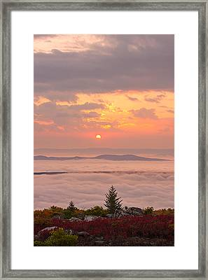 Framed Print featuring the photograph Sea Of Fog by Bernard Chen