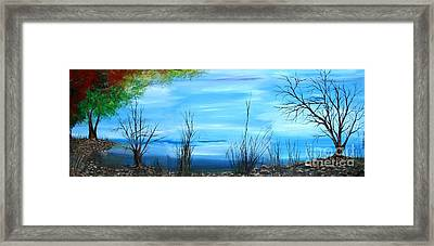 Sea Of Galiley Shore Framed Print by Roni Ruth Palmer