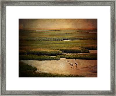 Sea Of Grass Framed Print by Lianne Schneider