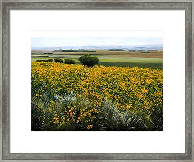 Sea Of Sunflowers Framed Print