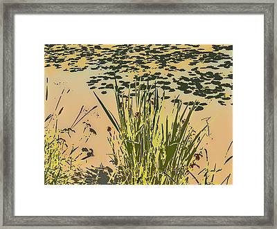 Framed Print featuring the photograph Sea Plants Abstract by Leif Sohlman