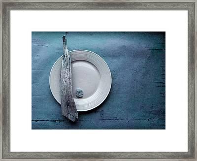Sea Plate - S04b03dcr Framed Print