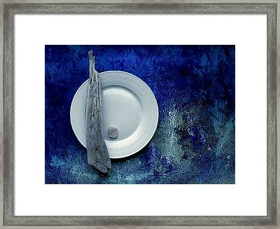 Sea Plate - S22v5bpp Framed Print