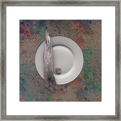 Sea Plate - S32e Framed Print