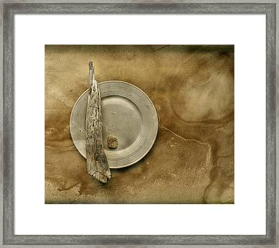 Sea Plate - Sp9b5b Framed Print by Variance Collections