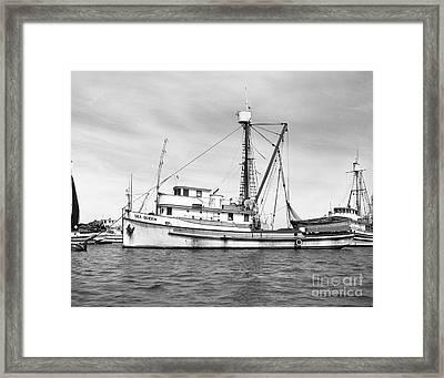 Purse Seiner Sea Queen Monterey Harbor California Fishing Boat Purse Seiner Framed Print