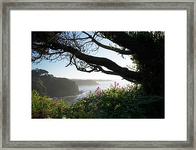 Sea Rock Inn View Framed Print by Colleen Renshaw