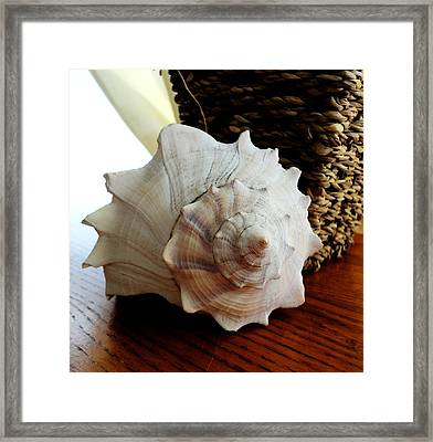 Sea Shell And Basket Framed Print