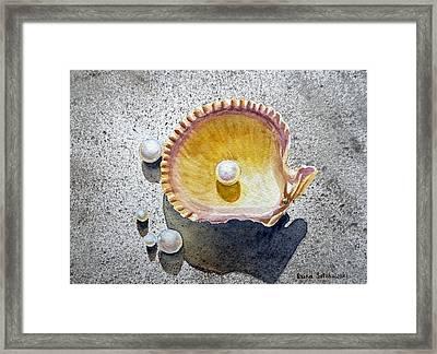 Sea Shell And Pearls Framed Print by Irina Sztukowski