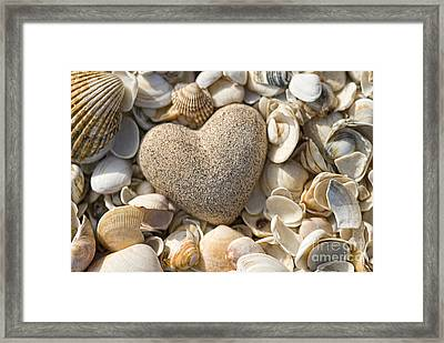 sea shell Heart Framed Print by Boon Mee