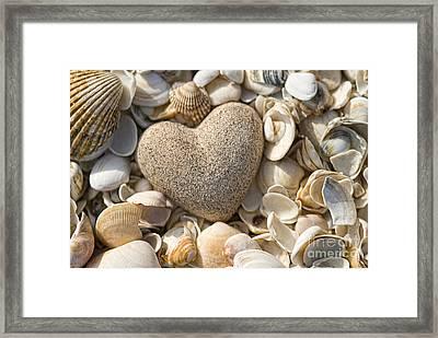 sea shell Heart Framed Print by Boon Mee