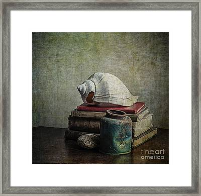 Sea Shell Stories Framed Print by Terry Rowe