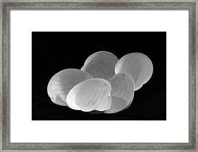 Respirator Mask Sea Shells Framed Print by Andrew Wohl