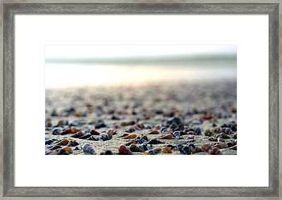 Sea Shells By The Sea Shore Framed Print by Kaleidoscopik Photography