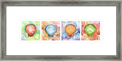 Sea Shells In Contrast Framed Print