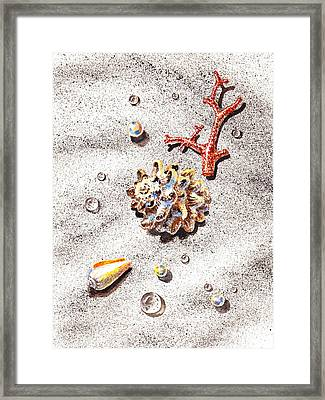 Sea Shells Pearls Water Drops And Coral Framed Print