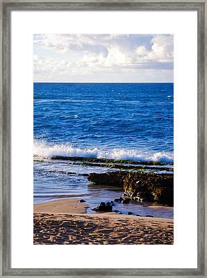 Sea Shelves Framed Print by Christi Kraft