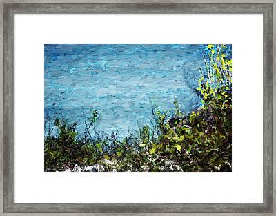 Sea Shore 1 Framed Print by David Lane