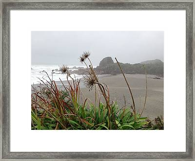Sea Shore Framed Print by Ron Torborg