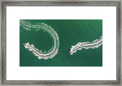 Sea Snake Framed Print