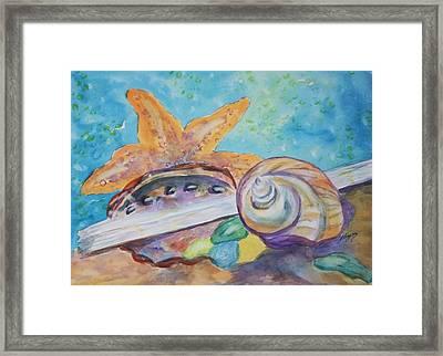 Sea Star-abalone-snail Shell Framed Print