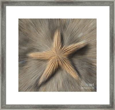 Sea Star Explosion Framed Print by Cathy Lindsey