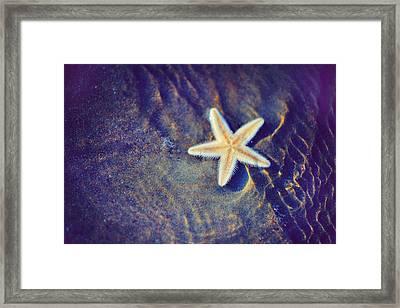 Sea Star. Memory Of The Sunny Days In Tropics Framed Print by Jenny Rainbow
