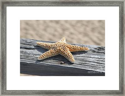 Sea Star On Railing Framed Print