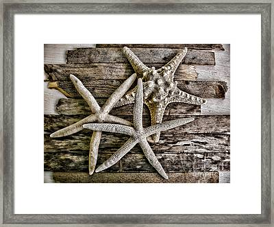 Sea Stars Framed Print