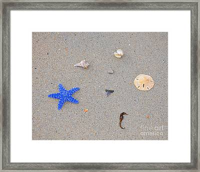 Sea Swag - Dark Blue Framed Print