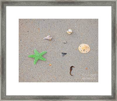 Sea Swag - Green Framed Print