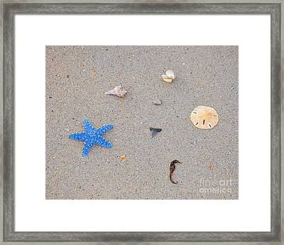 Sea Swag - Light Blue Framed Print