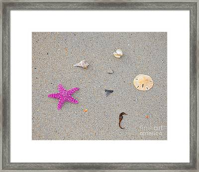 Sea Swag - Pink Framed Print