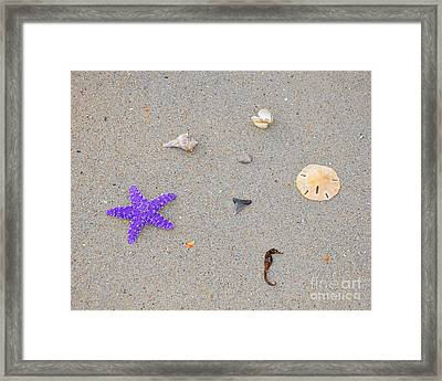 Sea Swag - Purple Framed Print