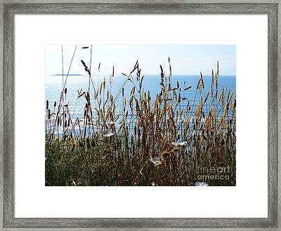 Sea Through Flora Framed Print by Gayle Swigart