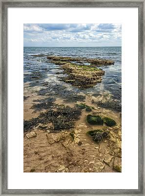 Sea Through Framed Print by Svetlana Sewell