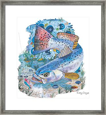 Sea Trout Wreck Framed Print
