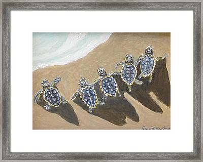 Sea Turtle Babes Framed Print by Anne Marie Brown