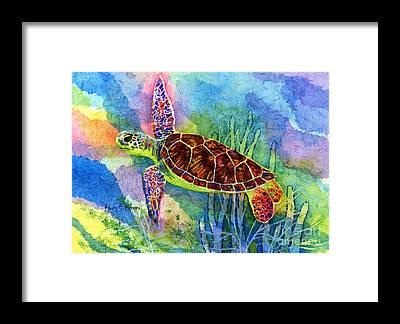 Sea Creatures Framed Prints