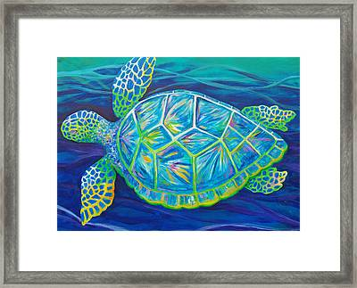 Sea Turtle I Framed Print by Anne Marie Brown