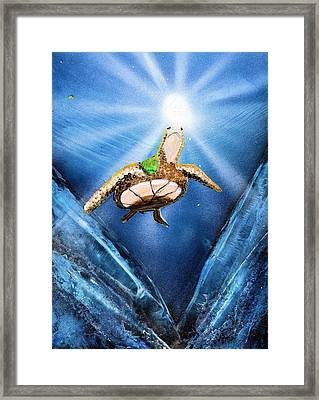Sea Turtle Framed Print by Just Joszie