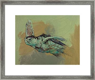 Sea Turtle Framed Print by Michael Creese