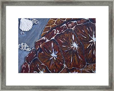 Sea Turtle Surf Framed Print
