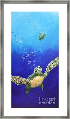 Sea Turtles Framed Print by Fred-Christian Freer