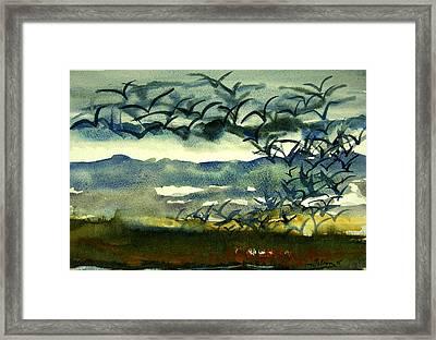 Seabirds Rising From The Marsh 2-27-15  Framed Print by Julianne Felton