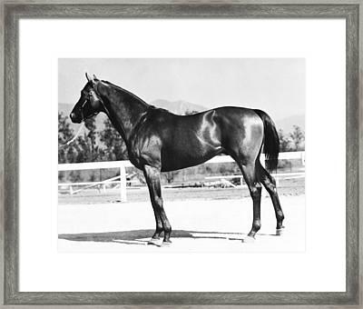 Seabiscuit Horse Racing #2 Framed Print