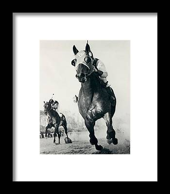 Paint Horse Framed Prints