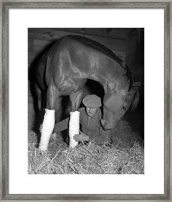 Seabiscuit Triple Crown Winner #11 Framed Print by Retro Images Archive