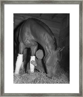 Seabiscuit Triple Crown Winner #6 Framed Print